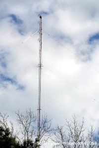 WPNC-FM (and former AM)